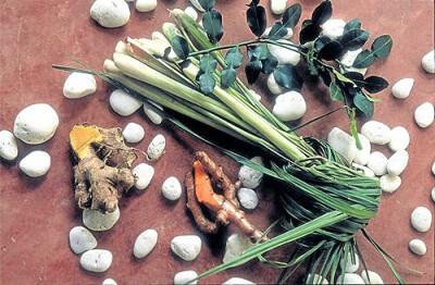 В Таиланде проходит выставка тайских трав Nation Herb Expo