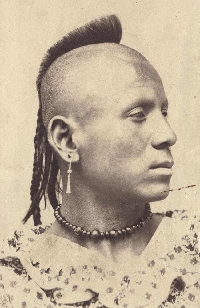 Эта фотография, сделанная между 1860 и 1867 гг., из штата США Канзас, показывает индейца пауни (pawnee, принадлежат к юто-ацтекскиой языковой семьи) с характерной прической. Ныне считается, что такие прически пауни являются одним из ближайших прообразов зародившегося в последней четверти XX века современного стиля причесок, называющегося «ирокез», или, иначе, «мохавк», - от названия одного из племен Ирокезской (iroquois) конфедерации - а именно племени мохоков (mohawk). При том, что пауни не являются ирокезским племенем, но стиль носит название в честь ирокезов.