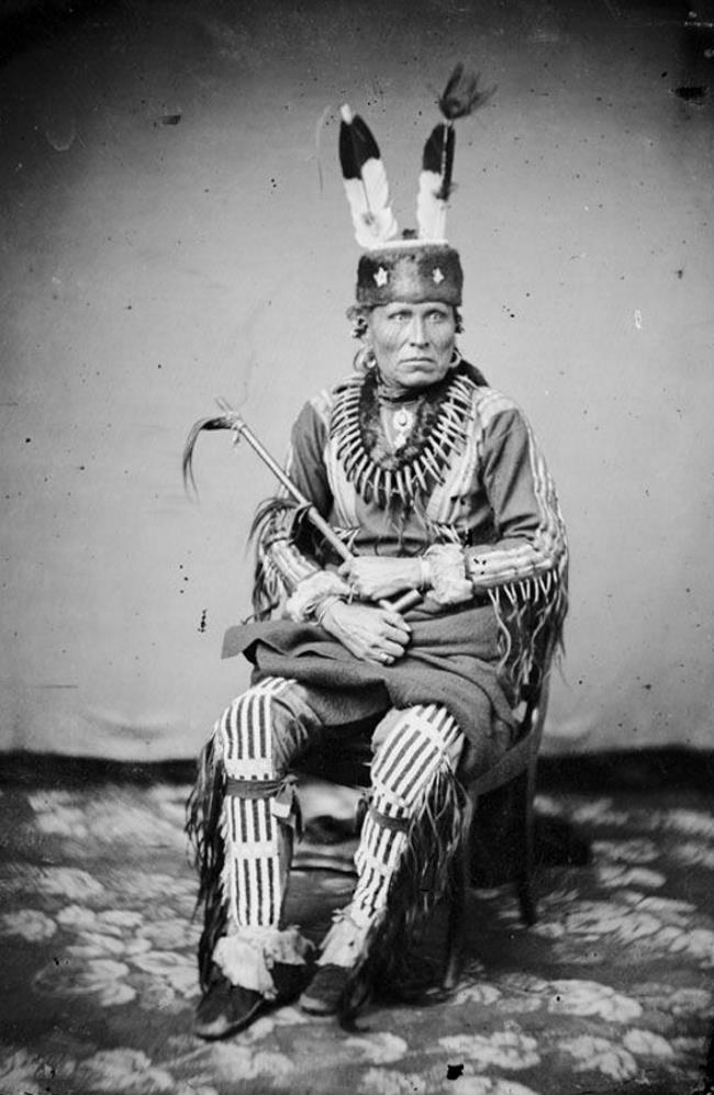 На илл.: Вождь племени пауни Peta-la-sha-ra по прозвищу «Главный человек» (Man Chief) в церемониальной шапке из меха выдры (otter-fur turbans, такие шапки также известны как otter-skin caps). Со старинной фотографии 1858 г. Напомним, что пауни (pawnee) принадлежат к юто-ацтекской языковой семье. Эти племена в прошлом были распространены на территориях современных штатов США Небраска и в северной части Канзаса, а ныне живут в штате Оклахома. Также говорят, что именно благодаря пауни европейцы в XIX веке обратили внимание на прически, ныне известные как прически в стиле в стиле «ирокез», или, иначе, «мохавк». Пауни носили такие прически, хотя и не принадлежали к ирокезам, которые (напротив) подобные прически, как считается не носили. Об этом мы говорили выше в этом обзоре.