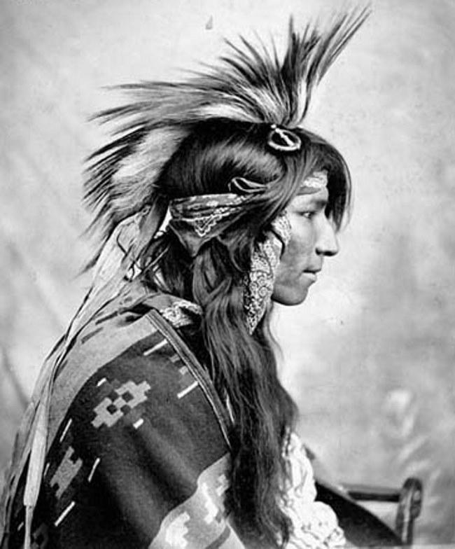 Головной убор известный как названием роуч (roach) можно видеть на этом старом фото индейца из племени чероки (cherokee). Напомним, что чероки относились к племенам ирокезской (iroquois) языковой группы, но не входили в состав Ирокезской конфедерации.