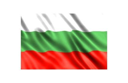Флаг Болгарии (2014). С сайта Болгарского культурного института в Москве.